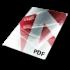 PDF Fiel Type Icon