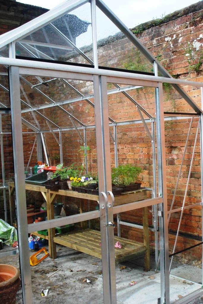 Hercules Blenheim 8x10 Greenhouse