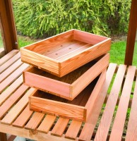 Cedar Seed Trays (Pack of 3)