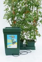 Easy 2 Grow Kit with  6 Pot Kit