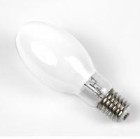 Mercury Fluorescent bulb