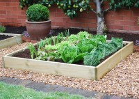 Timber Grow bed 4ft x 4ft