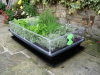 Vitopod Propagator single layer